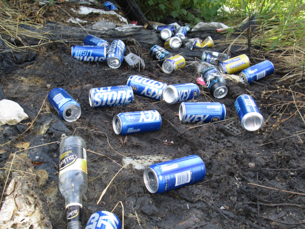Image of beer cans