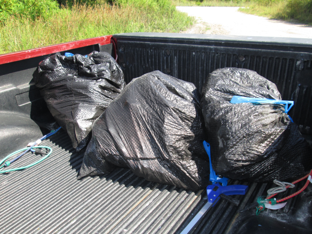 Image of three bags of collected trash