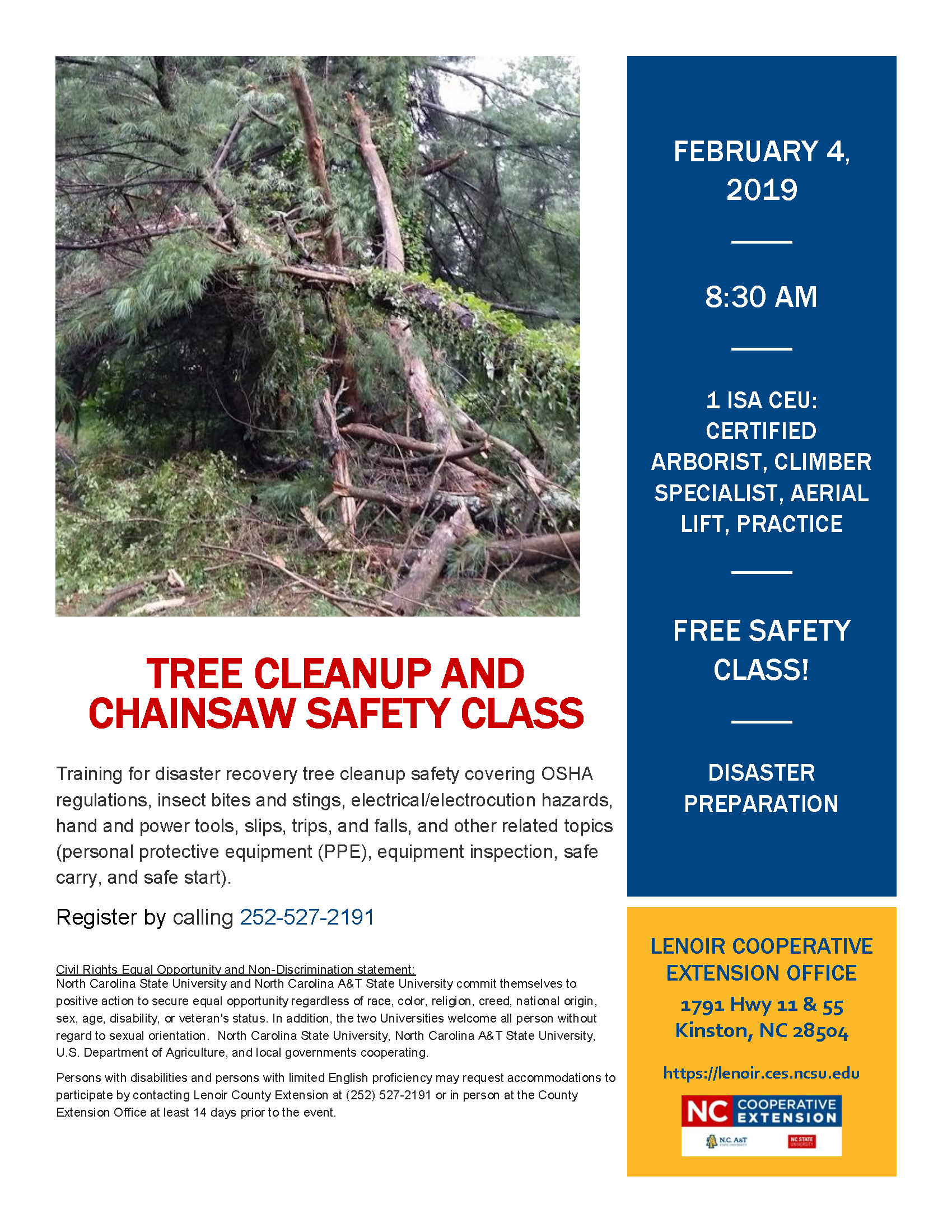 Chainsaw Safety flyer image