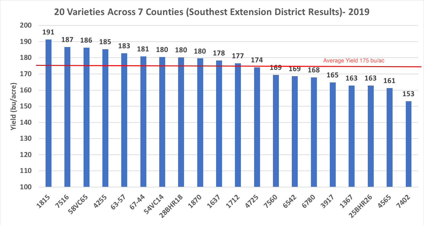 Graph showing yield of twenty corn varieties in multi-county test sites across Eastern North Carolina in 2019