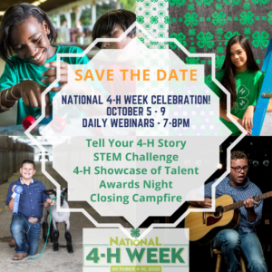 Cover photo for National 4-H Week - 2020 Opportunity4All