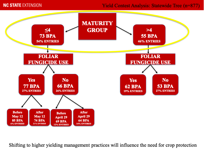 Flow chart showing most likely predictor of high yield to be maturity group, planting date and fungicide use